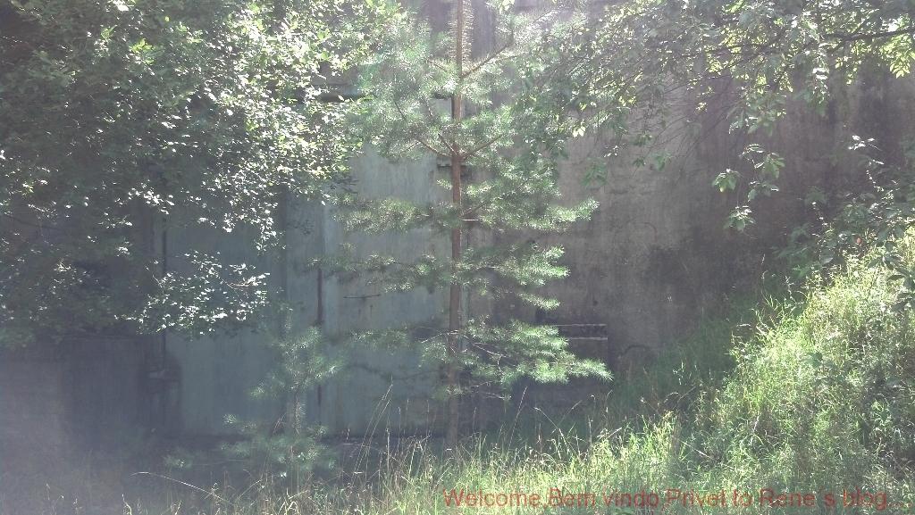 2012-08-11_13-12-34_77