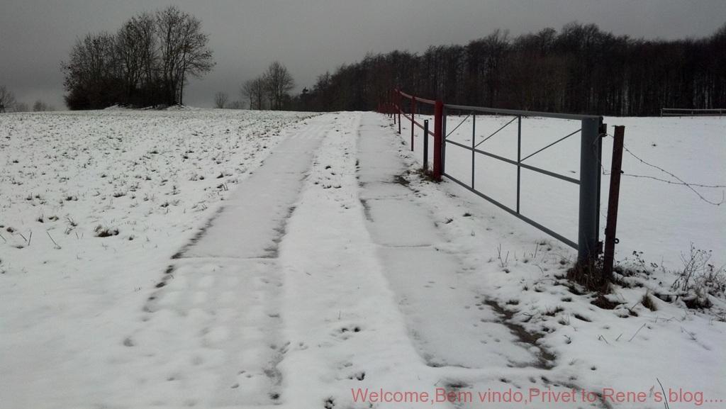 2011-12-31_11-13-38_11