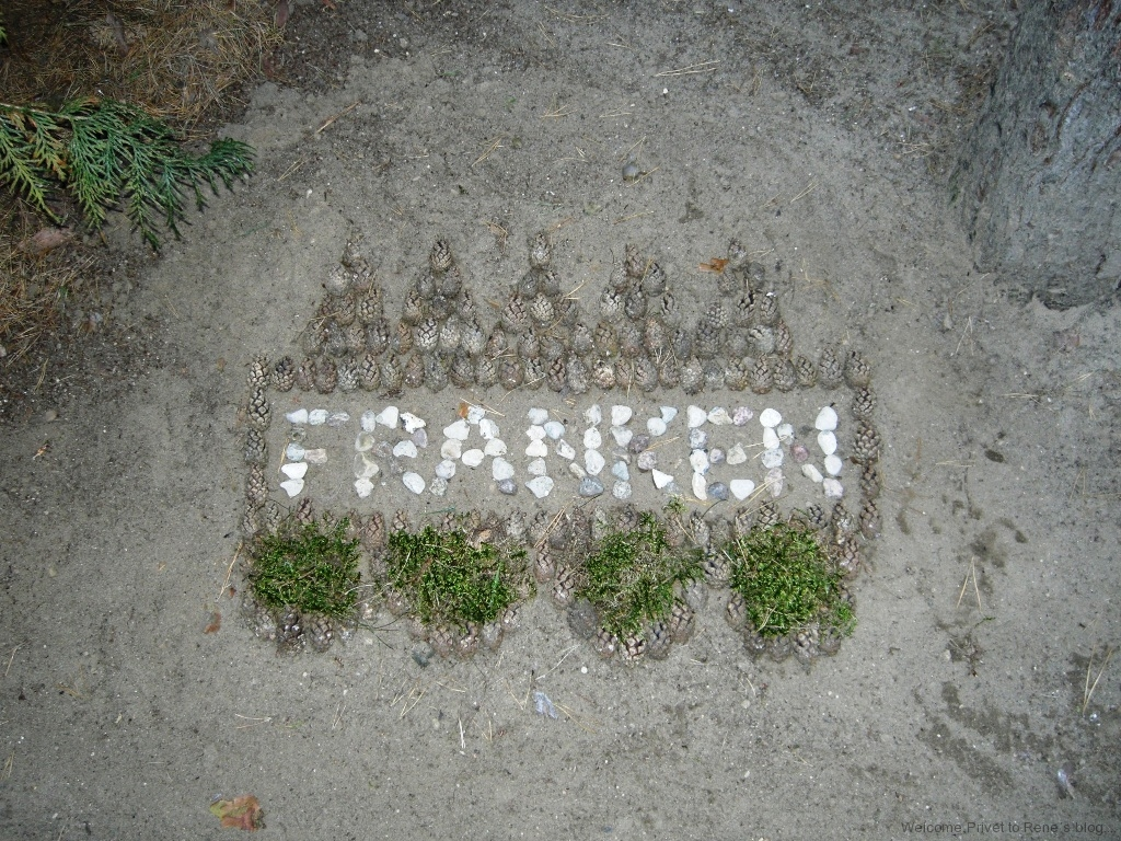 franken1